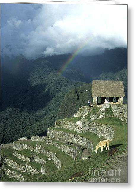 Spectacular Greeting Cards - Llama and rainbow at Machu Picchu Greeting Card by James Brunker