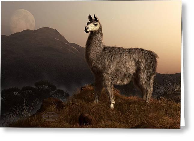 Llama Dawn Greeting Card by Daniel Eskridge