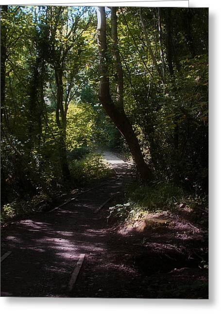 Welsh Waterways Greeting Cards - Llangollen and Maelor Country Walks - Wales Greeting Card by Michael Braham