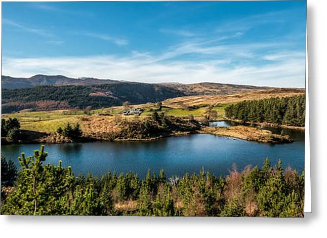Stones Greeting Cards - Llyn Glangors Greeting Card by Adrian Evans