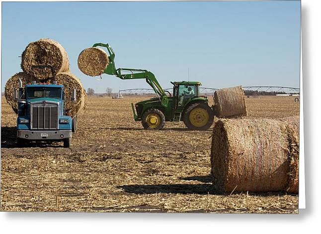 Loading Bales Of Hay Greeting Card by Jim West
