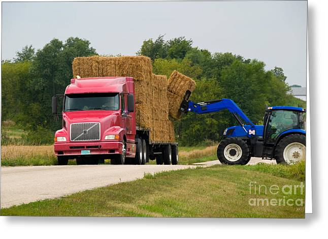 Hay Bales Greeting Cards - Loading Hay Greeting Card by Richard and Ellen Thane