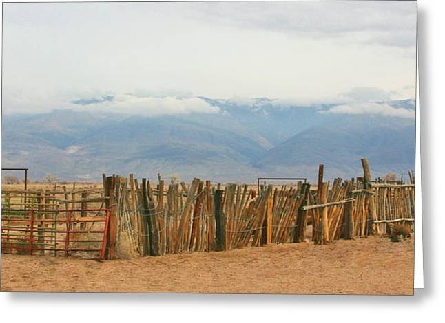 Old Western Photos Greeting Cards - Loading Shute Greeting Card by Marilyn Diaz