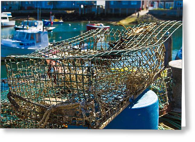"""""""crab Nets"""" Greeting Cards - Lobster Net at the Harbor Greeting Card by John Hoey"""