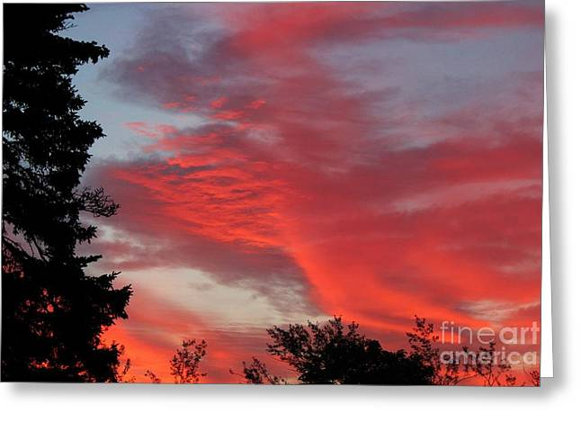 A Summer Evening Greeting Cards - Lobster Sky Greeting Card by Barbara Griffin