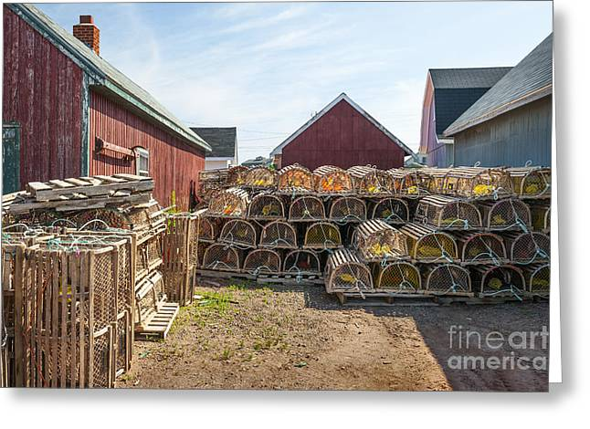 Lobster Nets Industry Greeting Cards - Lobster traps in North Rustico Greeting Card by Elena Elisseeva