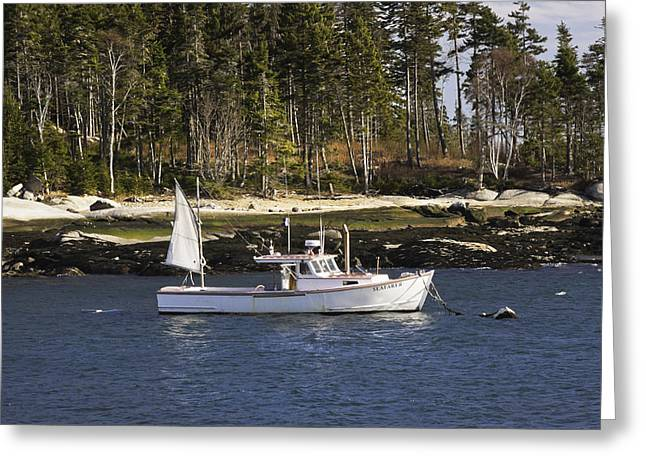 Maine Landscape Greeting Cards - Lobsterboat in Spruce Head Maine Greeting Card by Keith Webber Jr