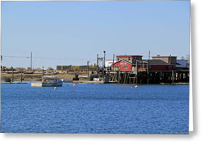 Lobster Shack Photographs Greeting Cards - Lobsters For Sale Greeting Card by Becca Brann