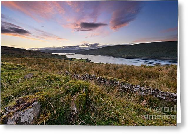 Bute Greeting Cards - Loch Fyne Greeting Card by Rod McLean