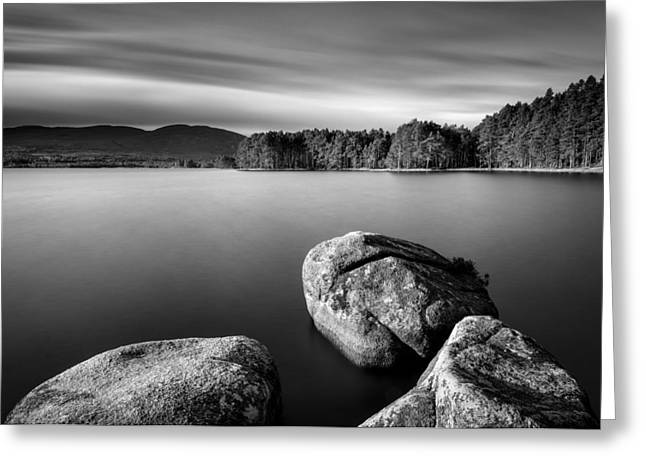 Secluded Greeting Cards - Loch Garten Greeting Card by Dave Bowman
