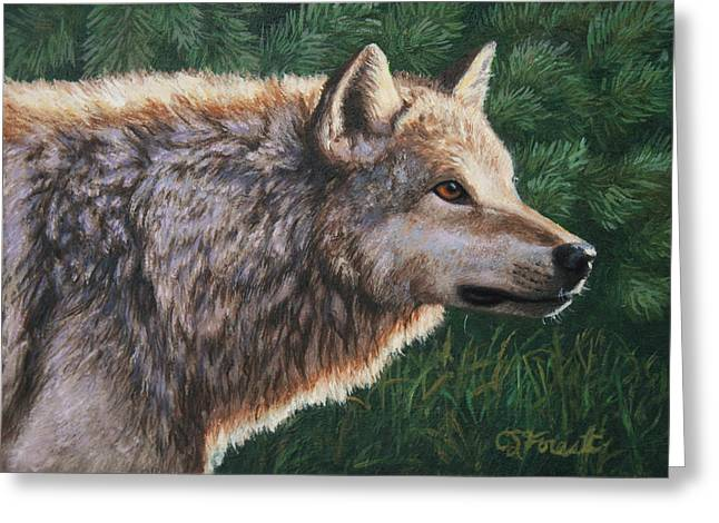 Grey Wolf - Locked Greeting Card by Crista Forest