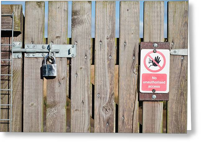 Prohibit Greeting Cards - Locked gate Greeting Card by Tom Gowanlock