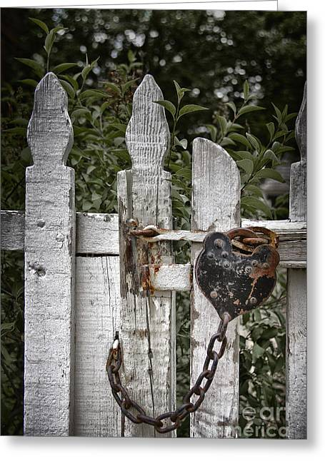 Painted Garden Gate Greeting Cards - Locked Greeting Card by Margie Hurwich