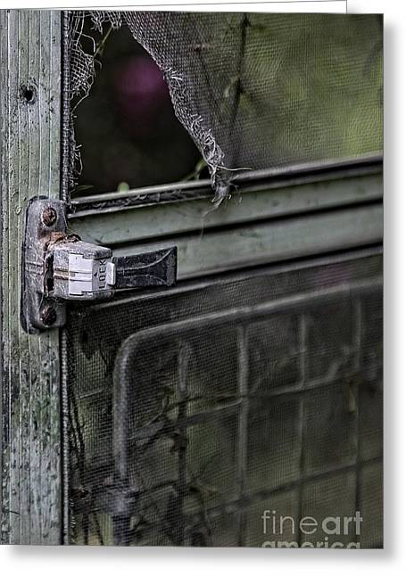 Screen Doors Greeting Cards - Locked Greeting Card by Roseann Petrie