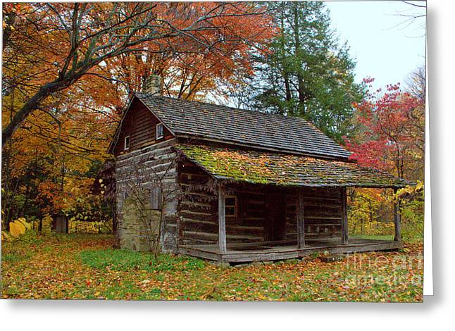 Turkey Run State Park Greeting Cards - Log Cabin 1 Greeting Card by Jim McCain