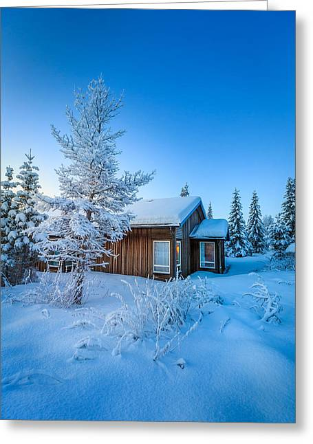 Temperature Greeting Cards - Log Cabin And Snow Covered Trees Greeting Card by Panoramic Images