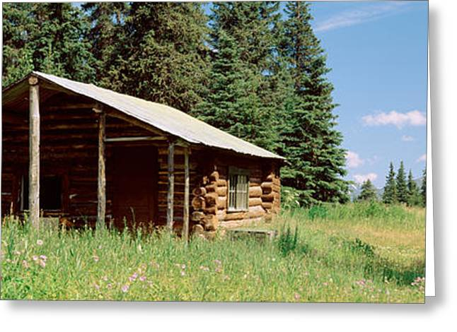 Log Cabins Photographs Greeting Cards - Log Cabin In A Field, Kenai Peninsula Greeting Card by Panoramic Images