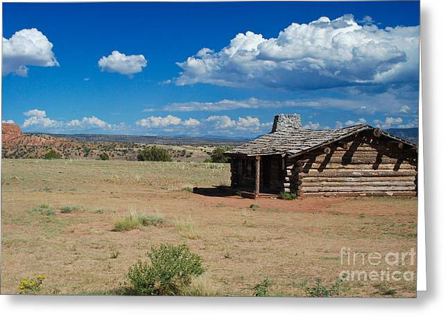 Log Cabins Greeting Cards - Log Cabin in New Mexico Greeting Card by Sonja Quintero