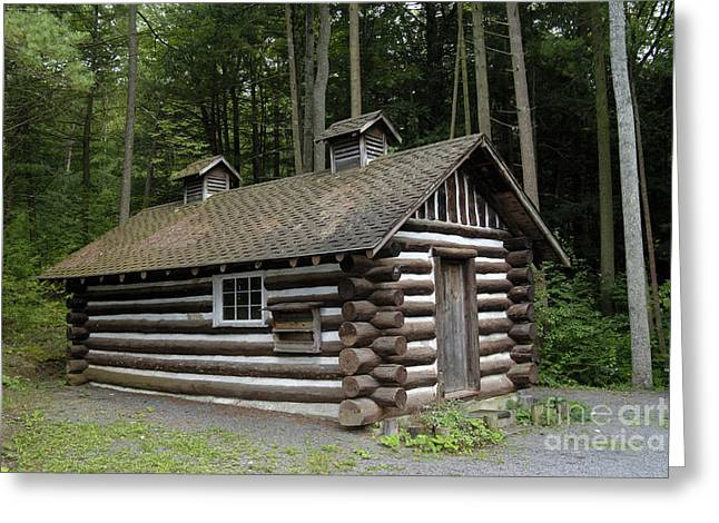 Log Cabins Greeting Cards - Log Cabin Greeting Card by Scott Camazine