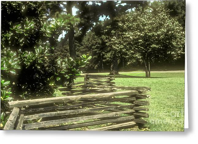 Recently Sold -  - Natchez Trace Parkway Greeting Cards - Log Fencing Greeting Card by Bob Phillips