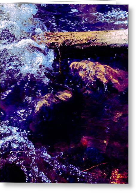 Log In River Greeting Card by Nicole Swanger