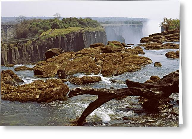 Zambezi River Greeting Cards - Log On The Rocks At The Top Greeting Card by Panoramic Images