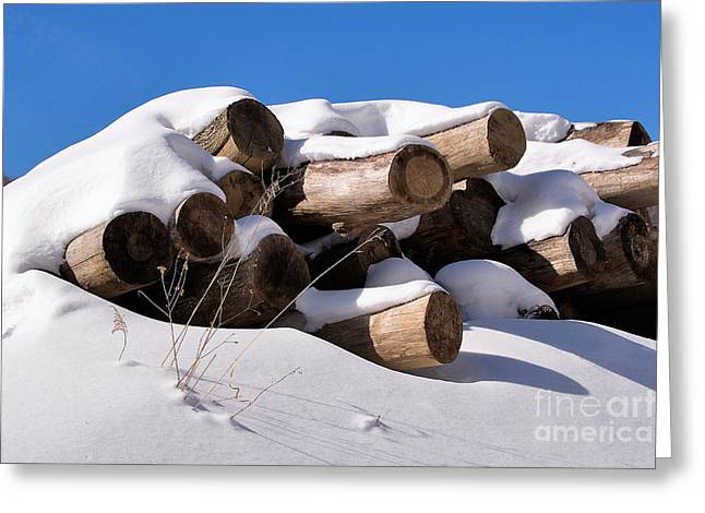 Log Pile In A Snow Drift In Winter Greeting Card by Louise Heusinkveld