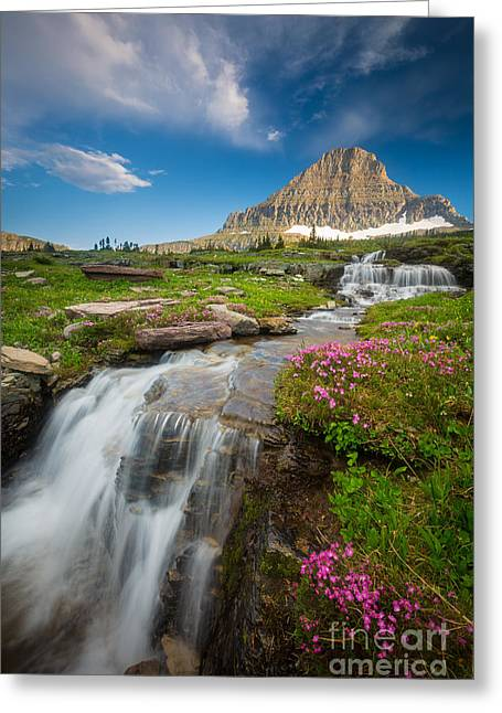 Logan Pass Cascades Greeting Card by Inge Johnsson