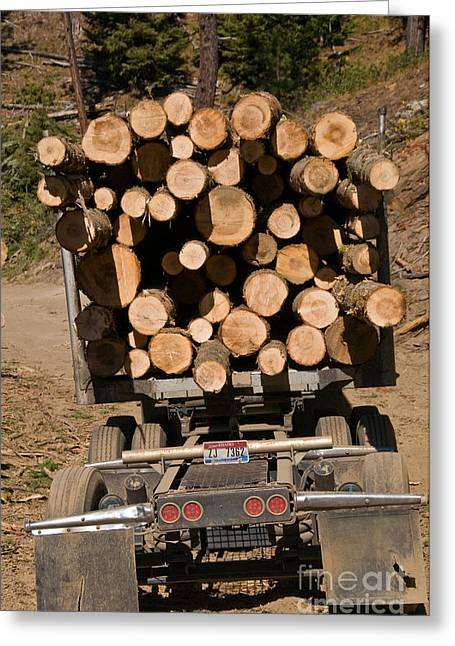 Logging Tractor Greeting Cards - Logging Truck Greeting Card by William H. Mullins