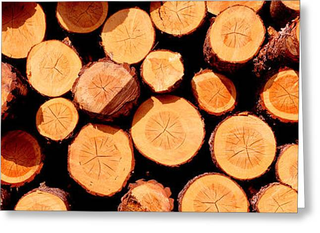 Logs Greeting Card by Panoramic Images