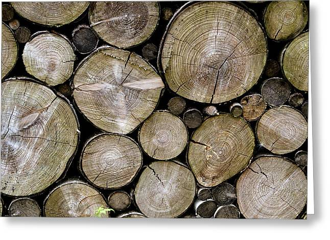 Recently Sold -  - Saw Greeting Cards - Logs Greeting Card by Robert Taylor