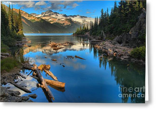 Logs Rocks And Reflections In Garibaldi Greeting Card by Adam Jewell