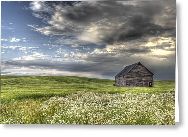 Barn Wood Greeting Cards - Lone Barn  Greeting Card by Latah Trail Foundation