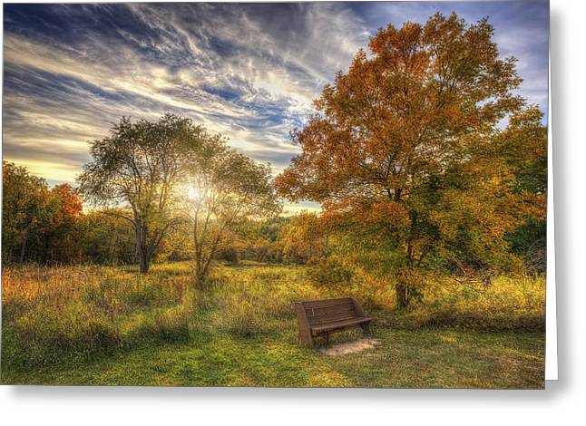 The Nature Center Greeting Cards - Lone Bench Under Tree - Fall Sunset - Retzer Nature Center - Waukesha Wisconsin Greeting Card by Jennifer Rondinelli Reilly