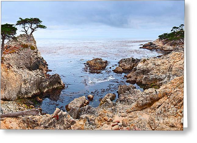 Foggy Beach Greeting Cards - Lone Cypress Panorama - Pebble Beach in Monterey California Greeting Card by Jamie Pham