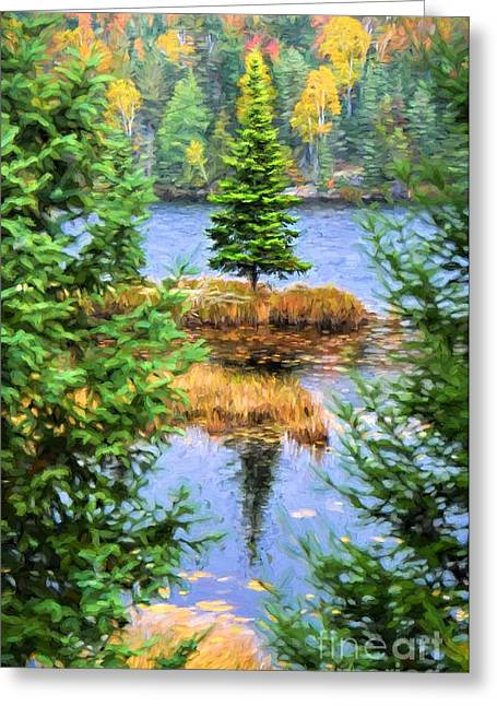 Branch Hill Pond Greeting Cards - Lone Fir Tree Autumn Greeting Card by Henry Kowalski