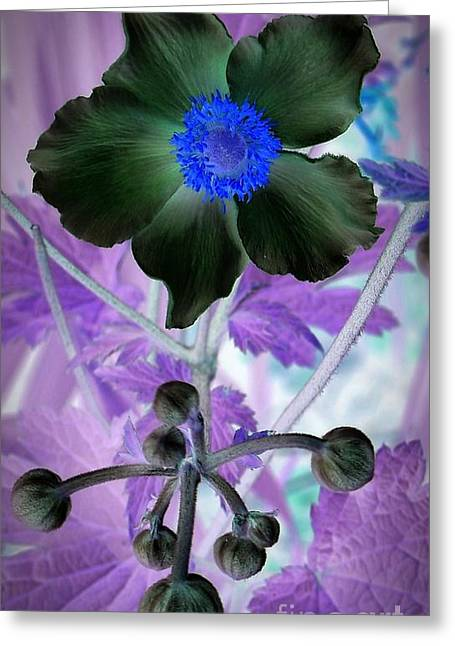 Neurotic Images Photography Greeting Cards - Lone Flower 1 Greeting Card by Chalet Roome-Rigdon