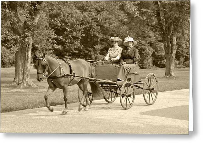 Horse And Cart Greeting Cards - Lone four wheel cart Greeting Card by Wayne Sheeler
