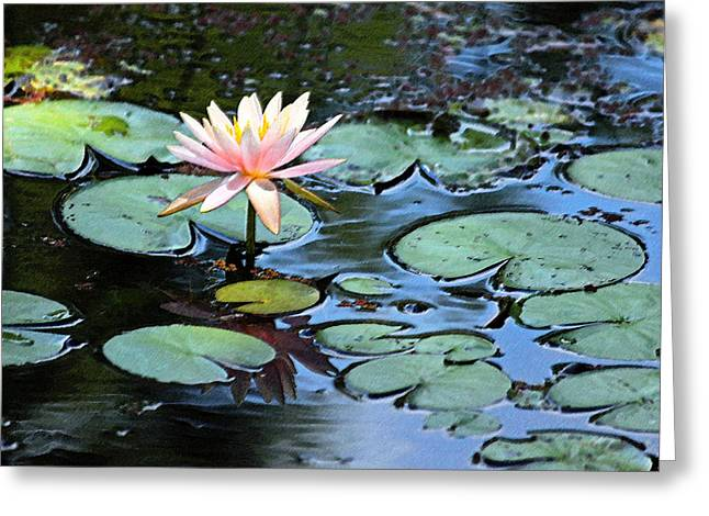 Low Country Watercolor Greeting Cards - Lone Lily Enhanced Greeting Card by Suzanne Gaff