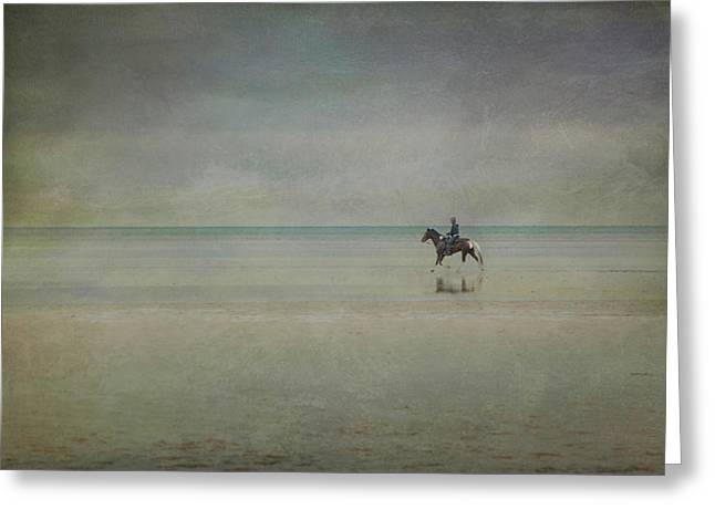Horse In Water Paint Greeting Cards - Lone Rider Greeting Card by Lynda Murtha