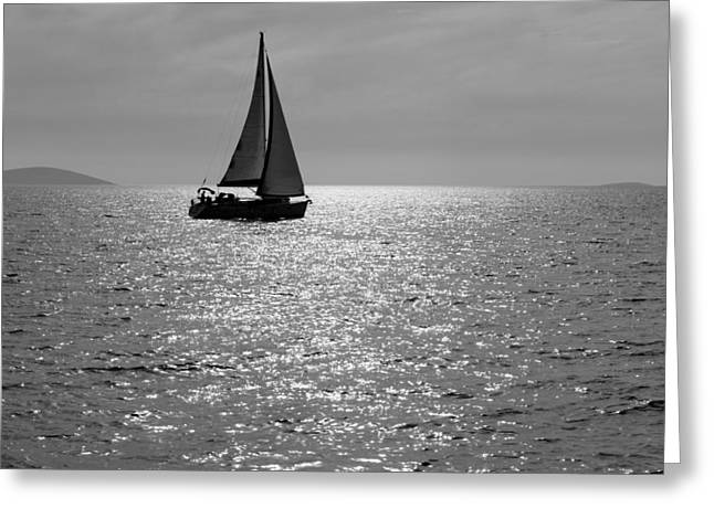 Lone Sailboat Greeting Card by Alexey Stiop