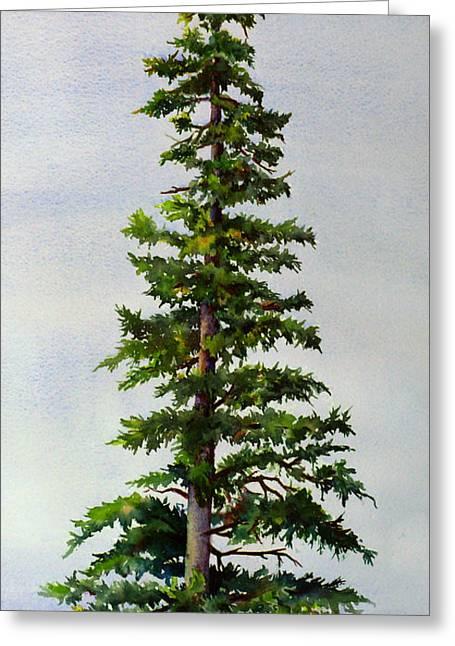 Lone Spruce Greeting Card by Karen Mattson