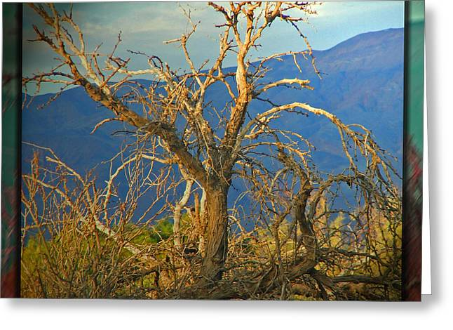 Lonely Existence Greeting Cards - Lone Tree - Death Valley Greeting Card by Monzo Rock