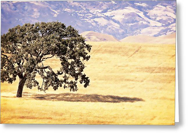 Caitlyn Grasso Greeting Cards - Lone Tree Greeting Card by Caitlyn  Grasso