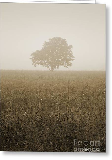 Gordan Greeting Cards - Lone Tree in Meadow Greeting Card by David Gordon