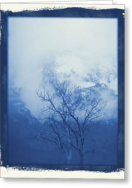 Haze Greeting Cards - Lone Tree In The Mountains Greeting Card by Dan Sproul