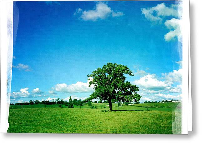 Color Green Greeting Cards - Lone tree Greeting Card by Les Cunliffe