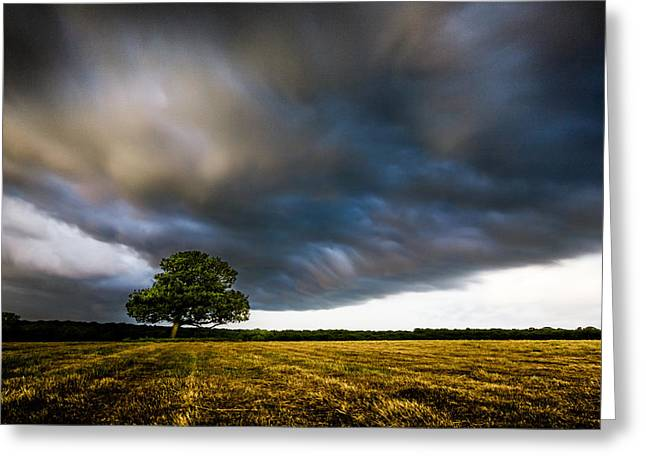 Storm Clouds Greeting Cards - Lone Tree with Storm Clouds Greeting Card by Ian Hufton