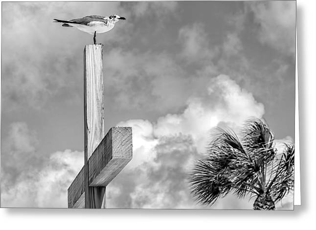 The Wooden Cross Greeting Cards - Lonely at the Top Greeting Card by Lynn Palmer