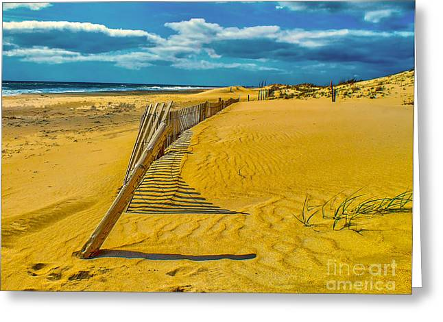 Sand Fences Greeting Cards - Lonely Beach Greeting Card by Nick Zelinsky